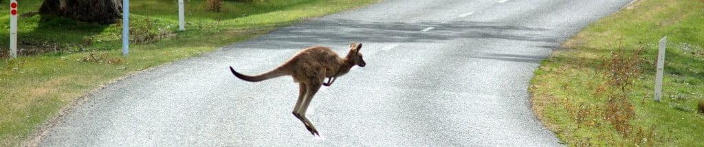 Rêver l'Australie: c'est safe