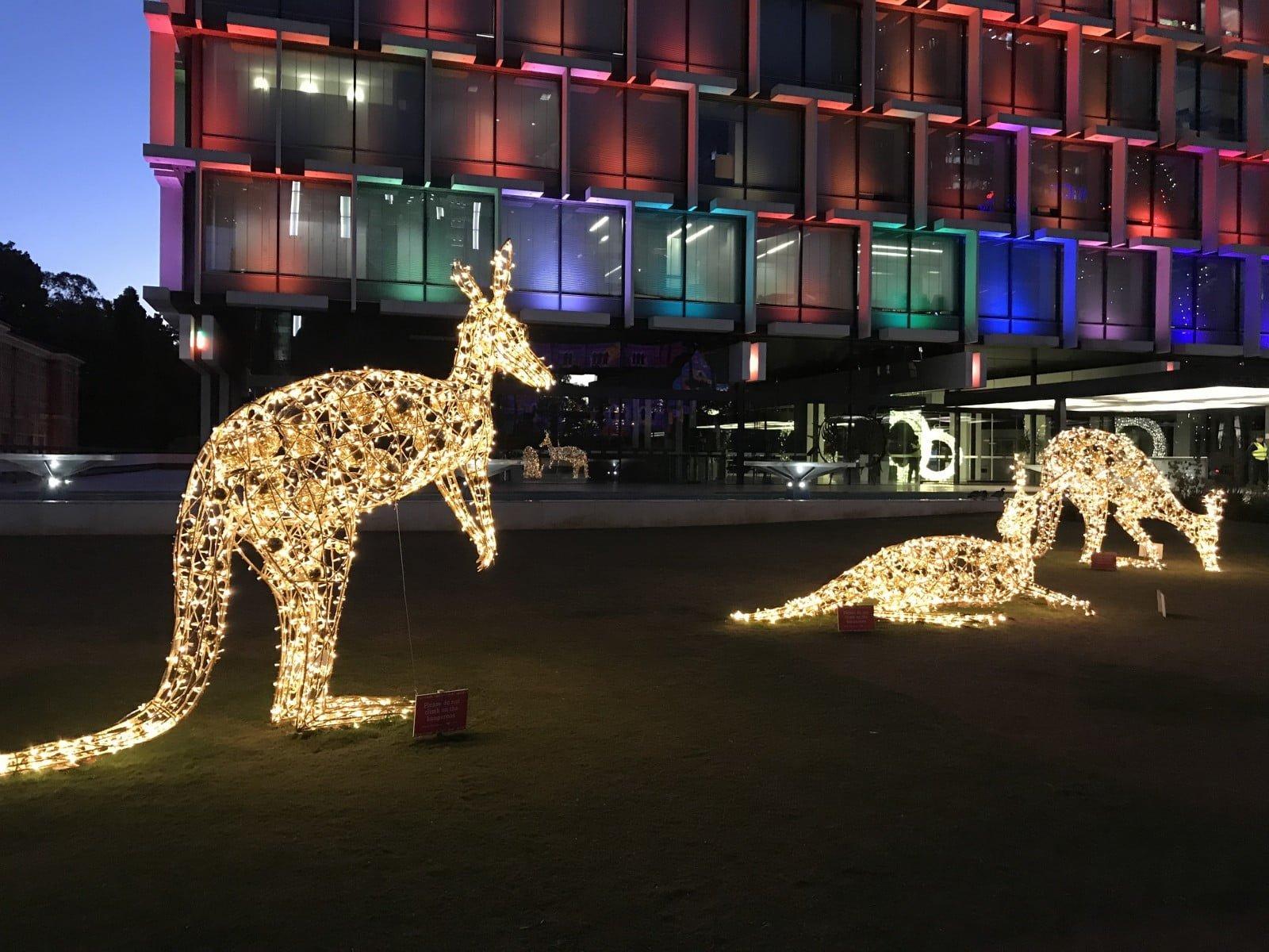 lumières en forme de kangourous
